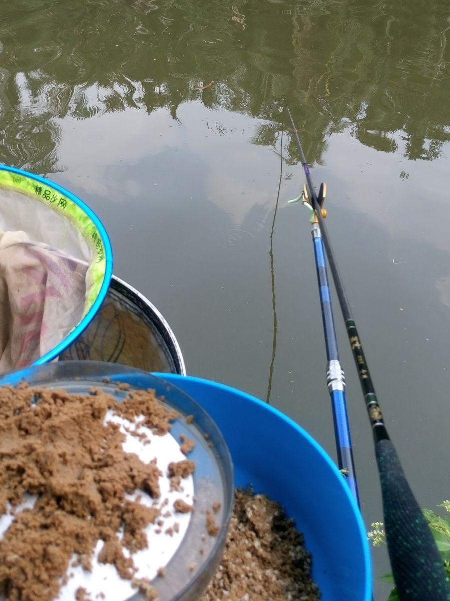 mồi câu cá quận 8